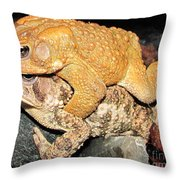 American Toads  Throw Pillow