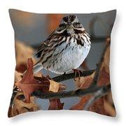 American Tree Sparrow No 2 Throw Pillow