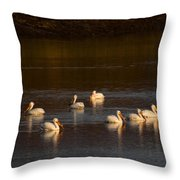 American White Pelicans Throw Pillow