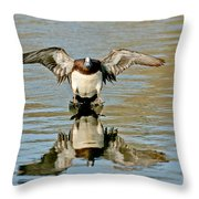 American Wigeon Drake Throw Pillow