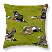 American Wigeon Drakes Throw Pillow