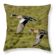 American Wigeon Pair In Flight Throw Pillow