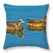 American Wigeon Pair Swimming Throw Pillow