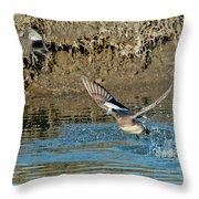 American Wigeon Pair Taking Throw Pillow