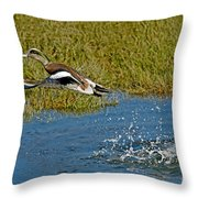 American Wigeon Taking Off Throw Pillow