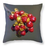 American Winterberry Throw Pillow