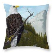 America's Pride Throw Pillow