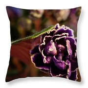 Amethyst African Violet Throw Pillow