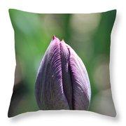 Amethyst Blossom Throw Pillow