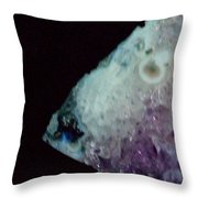 Amethyst Fish Throw Pillow