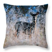 Amid The Frosty Wheat Throw Pillow