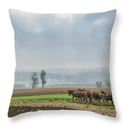 Amish Boy Plowing Throw Pillow