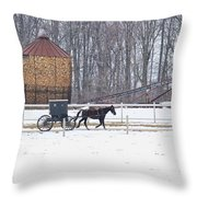 Amish Buggy And Corn Crib Throw Pillow