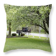 Amish Buggy At Riverbend Park Throw Pillow