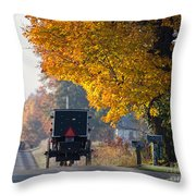 Amish Buggy Fall 2014 Throw Pillow