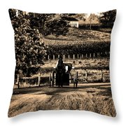 Amish Buggy On A Country Road Throw Pillow