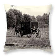 Amish Buggy Sept 2013 Throw Pillow