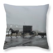 Amish  Buggy Winter Day Throw Pillow