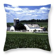 Amish Country - 38 Throw Pillow