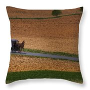 Amish Country Lancaster Pennsylvania Throw Pillow