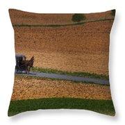 Amish Country Lancaster Pennsylvania Throw Pillow