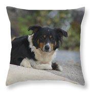 Amish Dog Throw Pillow