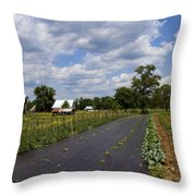 Amish Farm And Garden Throw Pillow