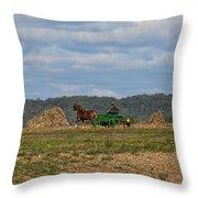 Amish Man Boy Buggy Throw Pillow