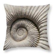 Ammonites Fossil Shell Throw Pillow