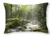 Ammonoosuc Ravine Trail - White Mountains Nh Usa Throw Pillow