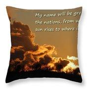Among Nations Throw Pillow