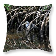 Among The Mangrove Roots Throw Pillow