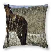 Among The Sea Oats Throw Pillow