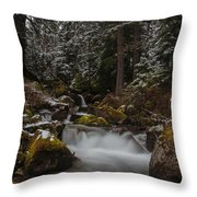 Amongst The Trees And Stones Throw Pillow