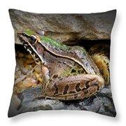 Amphibious Resident Throw Pillow