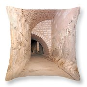 Amphitheatre Throw Pillow