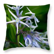 Amsonia Blue Stars Throw Pillow