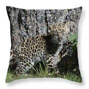Amur Leopard Cub Antics Throw Pillow