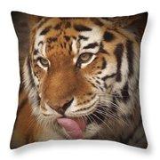 Amur Tiger 5 Throw Pillow
