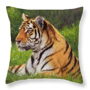 Amur Tiger Painting Throw Pillow by David Stribbling