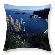 An Aerial View Of The Ocean, New Throw Pillow