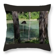 Bear In The Afternoon Throw Pillow