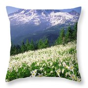 An Alpine Slope Turns White Throw Pillow