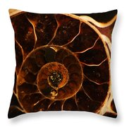 An Ancient Treasure IIi Throw Pillow