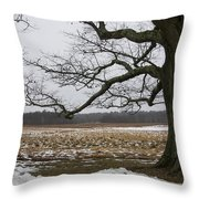 An Appleton Tree And Field In Winter Throw Pillow