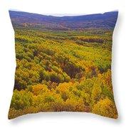 An Autumn Carpet Throw Pillow