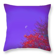 An Autumn Morning Throw Pillow
