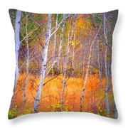 An Autumn Symphony Of Colour Throw Pillow