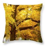 An Autumn Walk - 2 Throw Pillow