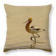 An Avocet Wading The Shore Throw Pillow